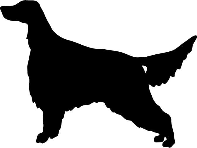 Red Setter svg #17, Download drawings