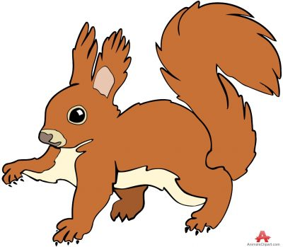 Red Squirrel clipart #1, Download drawings