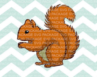 Red Squirrel svg #5, Download drawings