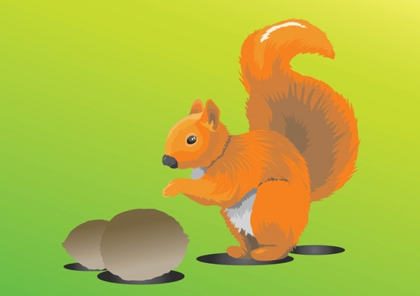 Red Squirrel svg #6, Download drawings