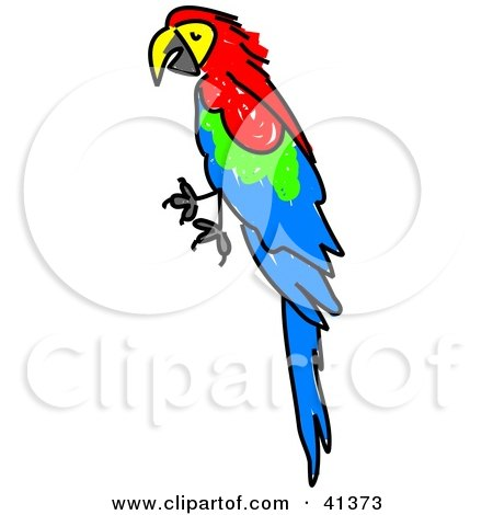 Red-and-green Macaw clipart #16, Download drawings