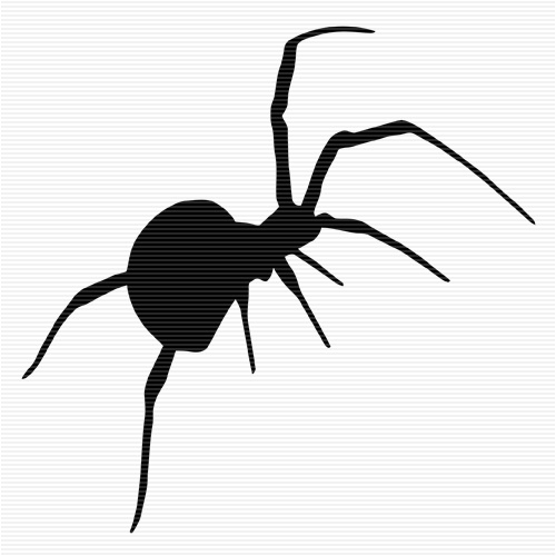 Redback Spider clipart #14, Download drawings