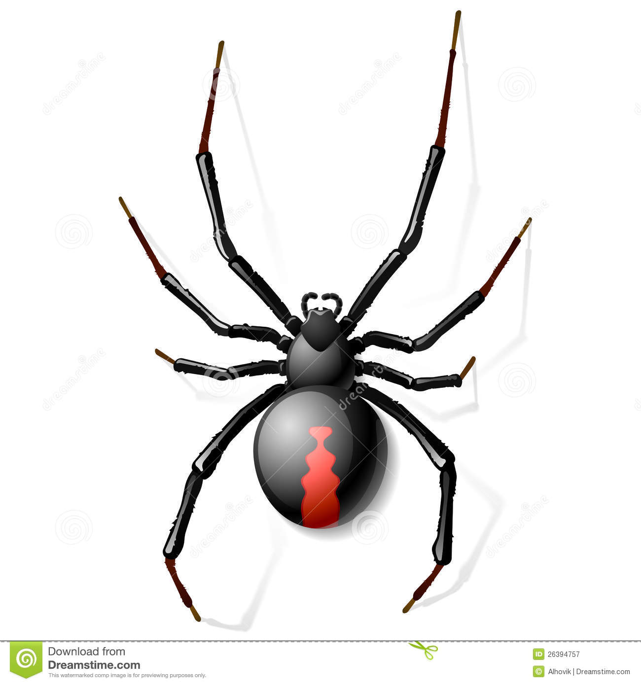 Redback Spider clipart #2, Download drawings