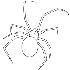 Redback Spider coloring #6, Download drawings