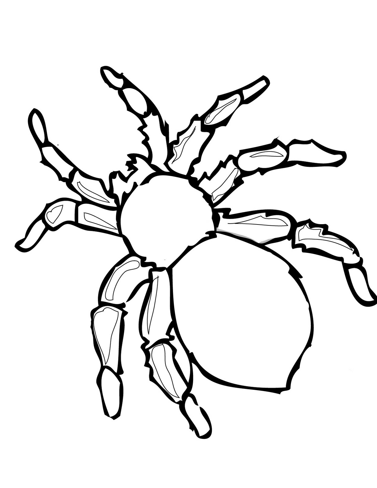 Redback Spider coloring #2, Download drawings