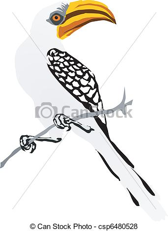Red-billed Hornbill clipart #19, Download drawings
