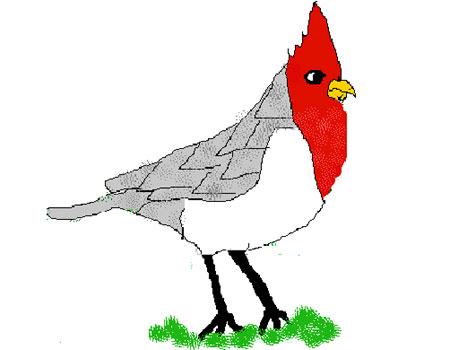 Red-Crested Cardinal clipart #17, Download drawings
