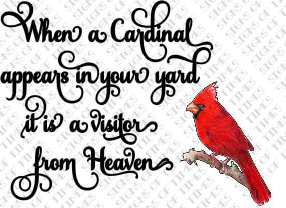 Red-Crested Cardinal svg #5, Download drawings