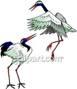 Red-crowned Crane clipart #9, Download drawings