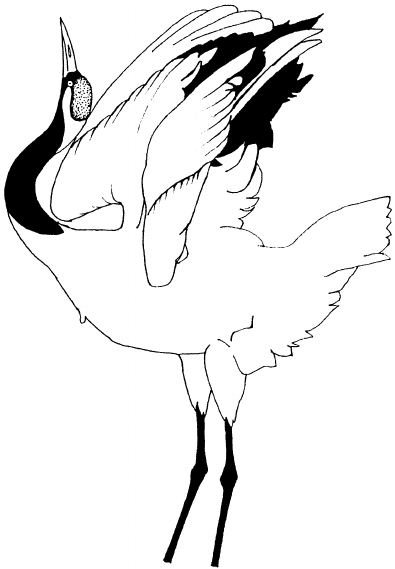 Red-crowned Crane coloring #4, Download drawings
