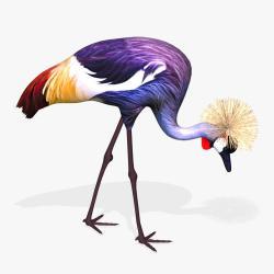 Red-crowned Crane svg #7, Download drawings