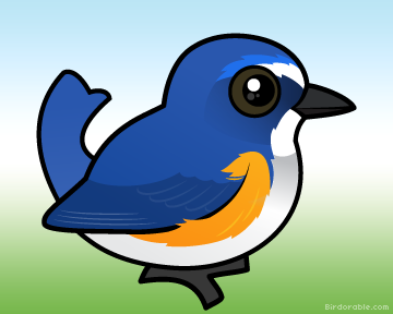 Red-flanked Bluetail clipart #16, Download drawings
