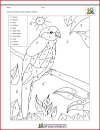 Red-rumped Parrot coloring #2, Download drawings