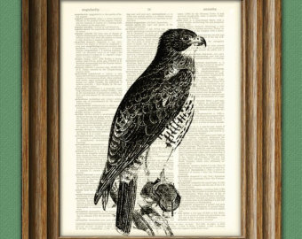 Red-tailed Hawk svg #3, Download drawings