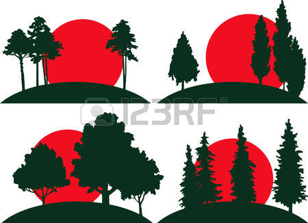 Redwood clipart #4, Download drawings