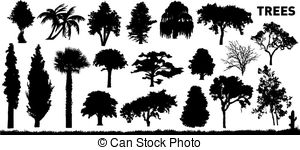 Redwood clipart #15, Download drawings