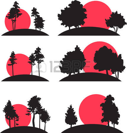 Redwood clipart #2, Download drawings