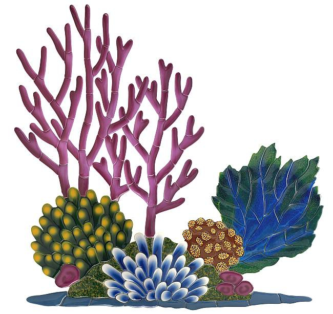 Reef clipart #2, Download drawings