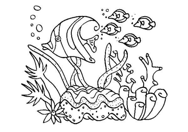 Great Barrier Reef coloring #12, Download drawings