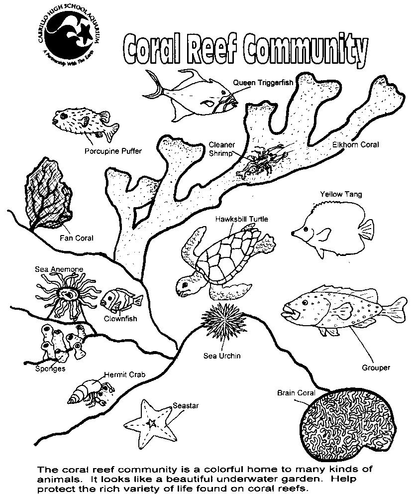 Great Barrier Reef coloring #17, Download drawings