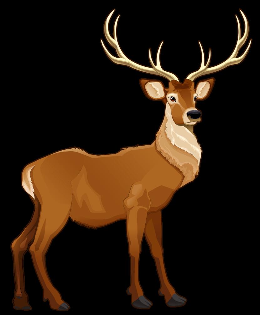 Reindeer clipart #4, Download drawings