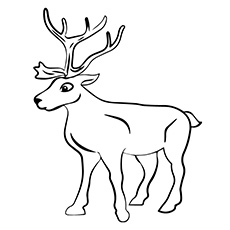 Reindeer coloring #11, Download drawings