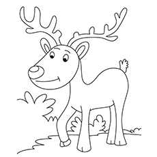 Reindeer coloring #9, Download drawings