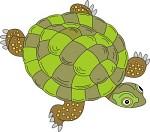 Reptile clipart #19, Download drawings