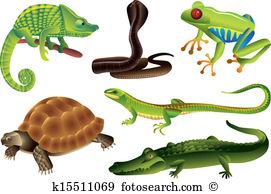 Reptile clipart #14, Download drawings