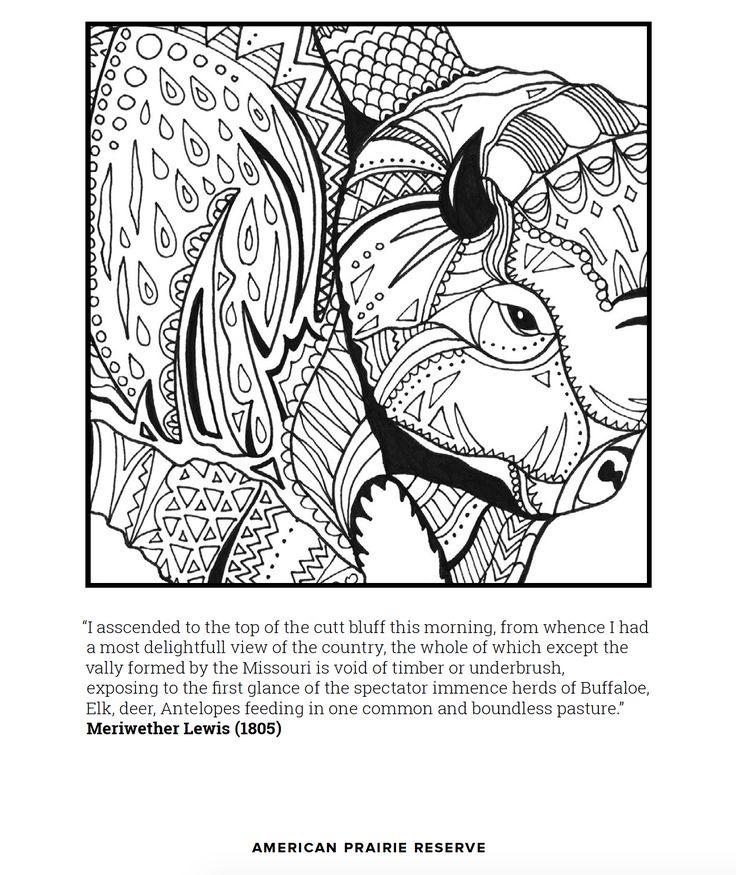Reserve coloring #17, Download drawings