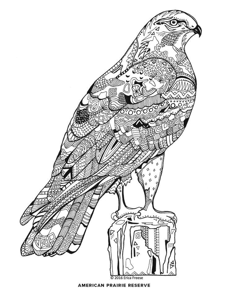 Reserve coloring #2, Download drawings