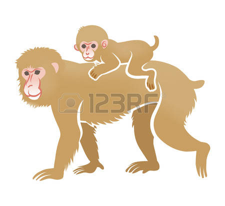 Rhesus Macaque clipart #16, Download drawings