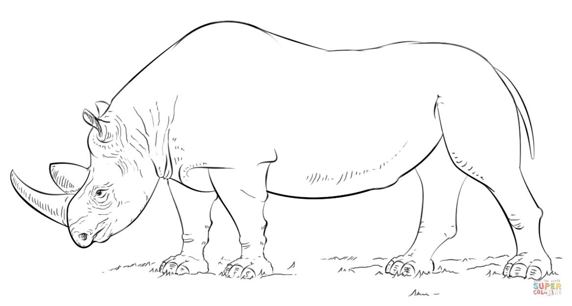 Rhino coloring #11, Download drawings