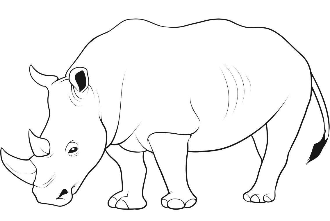 Rhino coloring #15, Download drawings