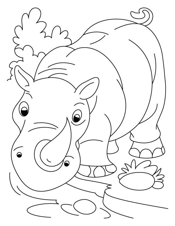 Rhino coloring #6, Download drawings