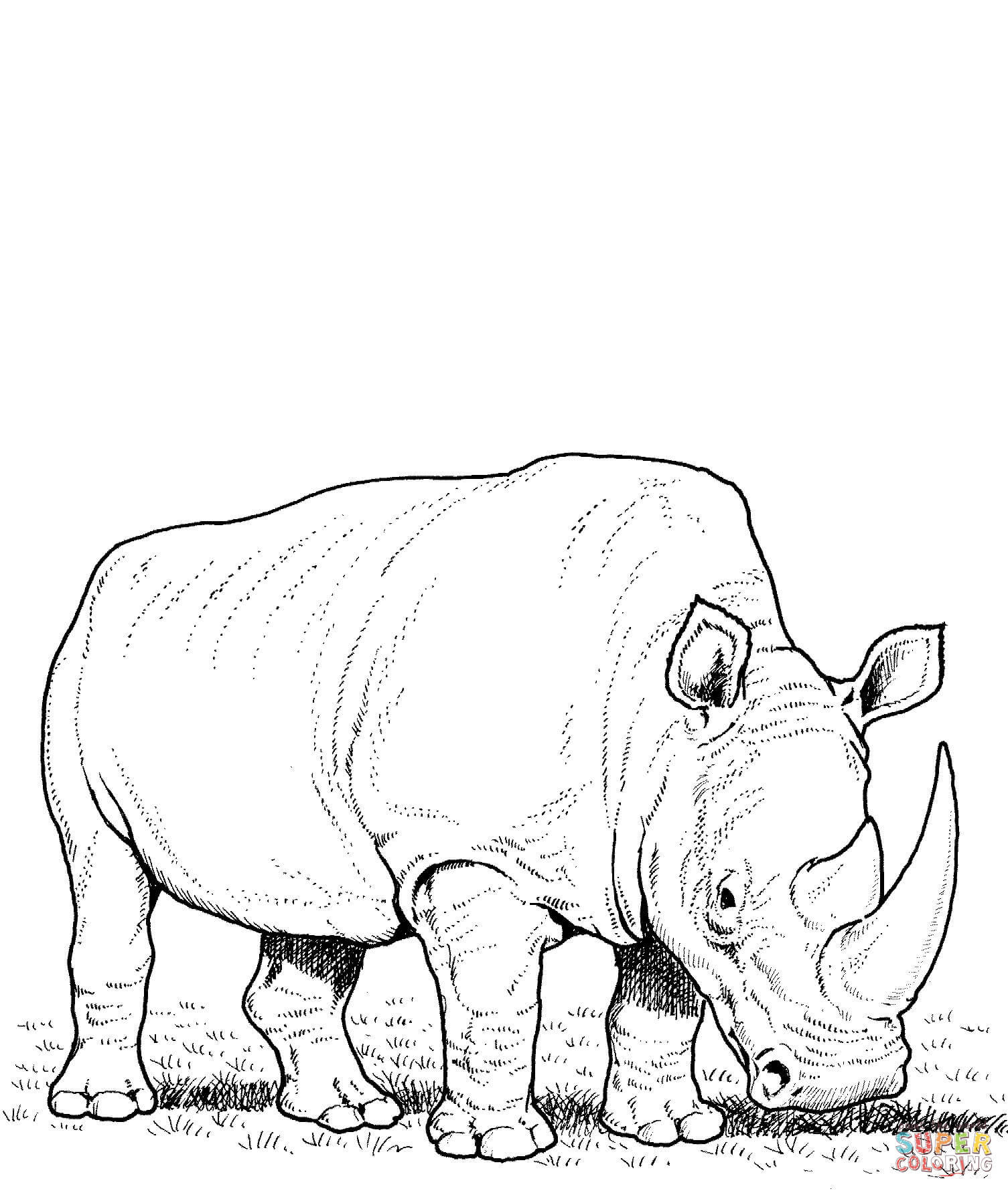 Rhino coloring #9, Download drawings