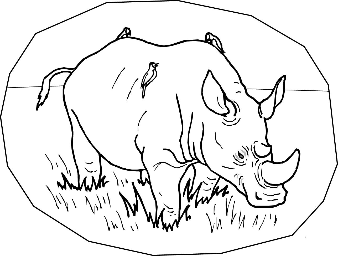 Rhino coloring #18, Download drawings