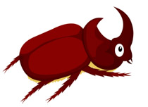 Rhinoceros Beetle clipart #4, Download drawings