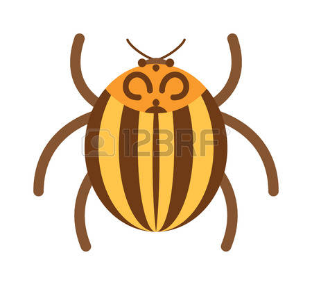 Rhinoceros Beetle clipart #7, Download drawings