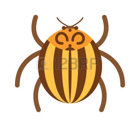 Rhinoceros Beetle clipart #14, Download drawings