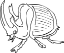 Rhinoceros Beetle clipart #2, Download drawings