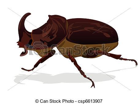 Rhinoceros Beetle clipart #4, Download drawings