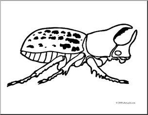Rhinoceros Beetle clipart #10, Download drawings