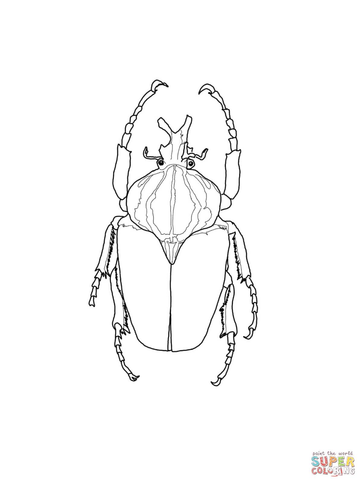 Rhinoceros Beetle coloring #6, Download drawings