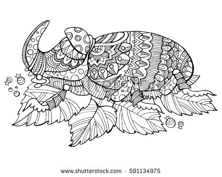 rhinoceros beetle coloring pages - photo#28