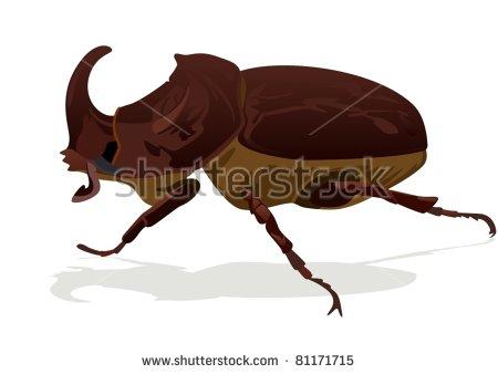 Rhinoceros Beetle svg #19, Download drawings
