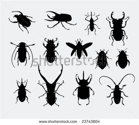Rhinoceros Beetle svg #10, Download drawings