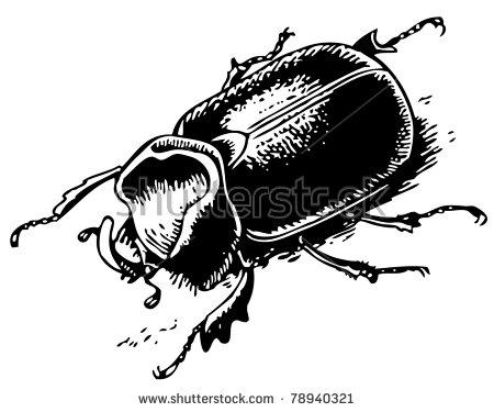 Rhinoceros Beetle svg #20, Download drawings