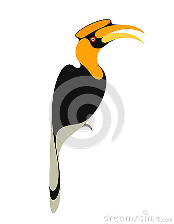Rhinoceros Hornbill clipart #11, Download drawings