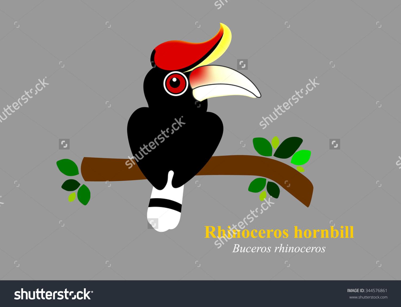 Rhinoceros Hornbill clipart #1, Download drawings